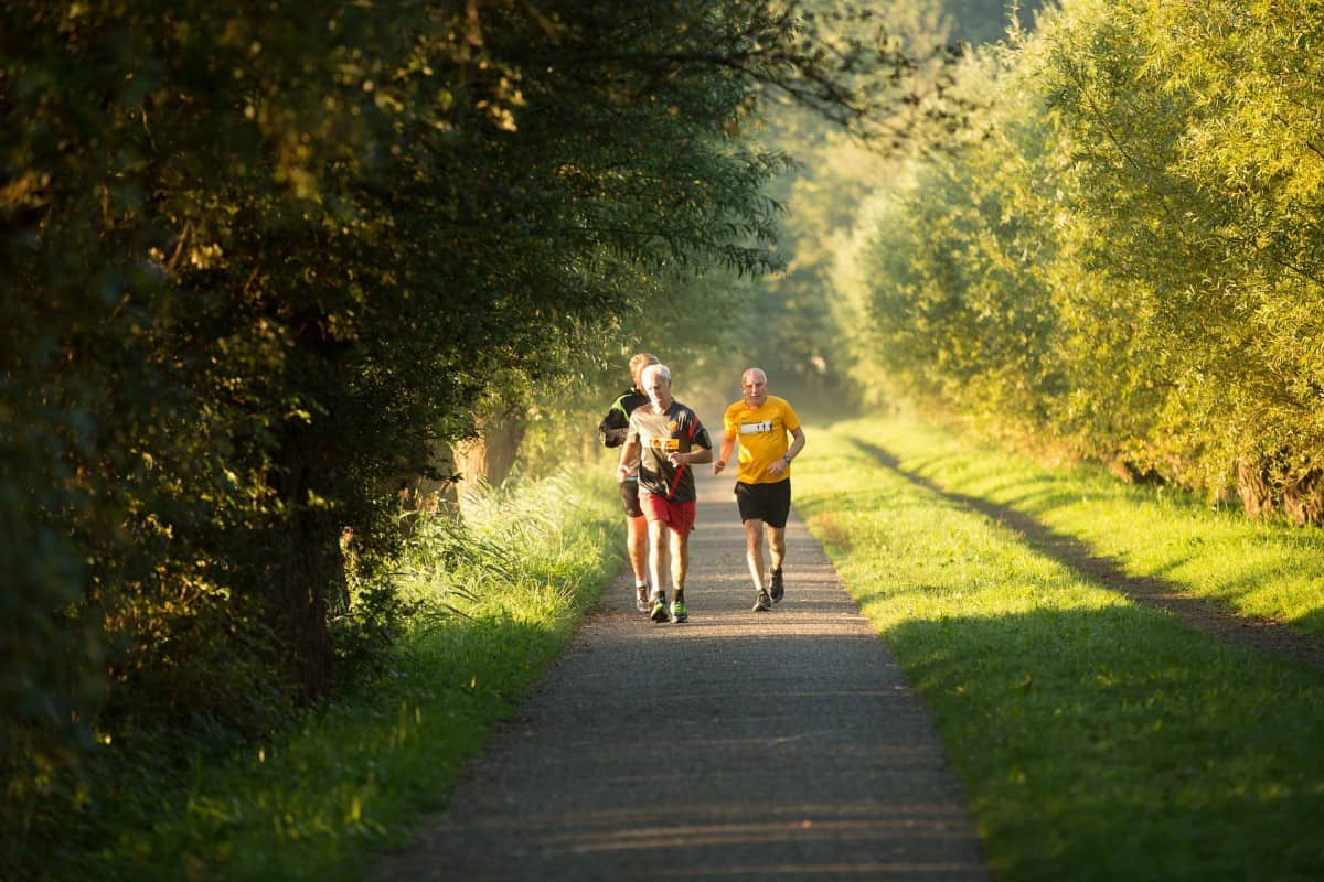 treningsprogram for nybegynnere - løping - løpetrening.no